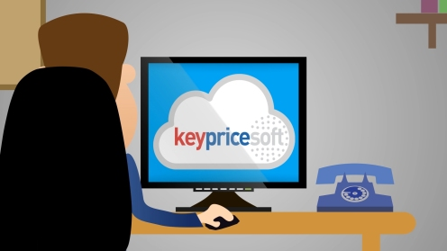 Keyprice cartoon usa_5
