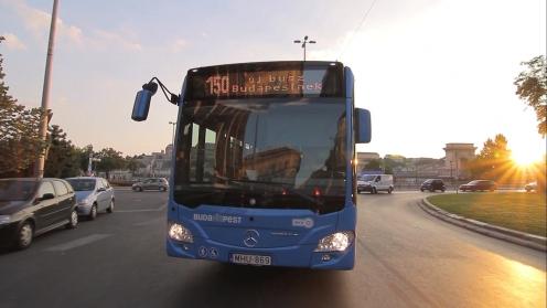 VT Transman image_36